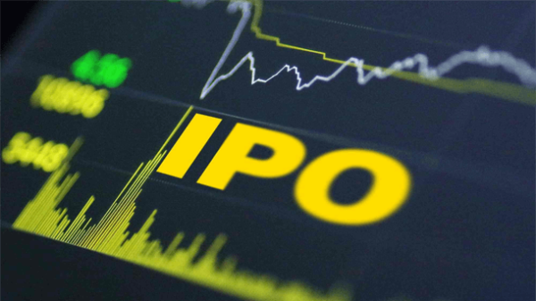 Read more about the article Курс по IPO