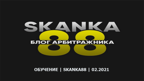 Read more about the article skanka88 2021