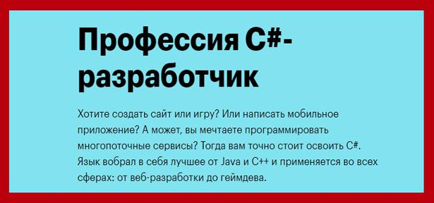 professiya-s-razrabotchik